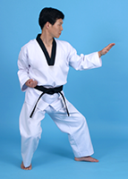 Taekwondo Yougupja Poomsae photo