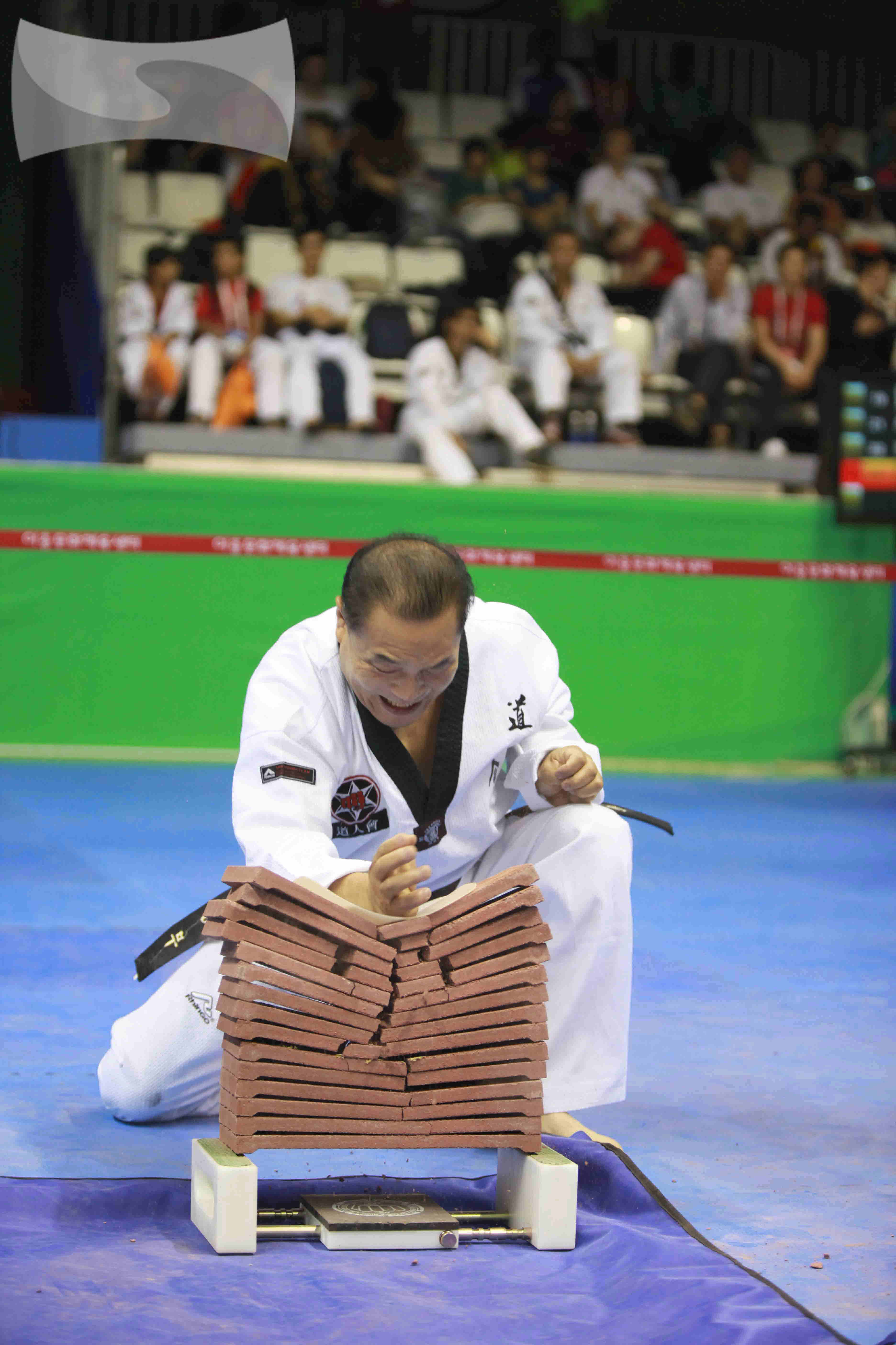2015 World Taekwondo Hanmadang Knife Hand Breaking